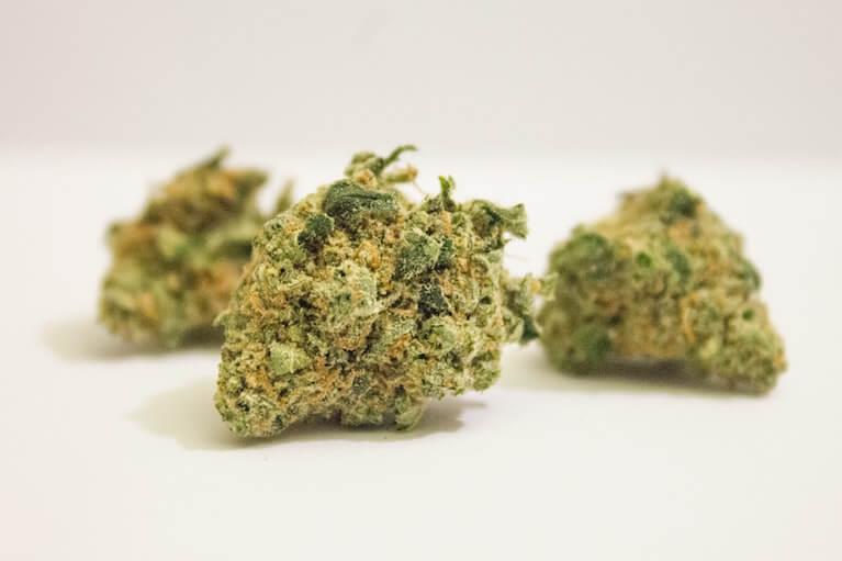 harvested_cannabis